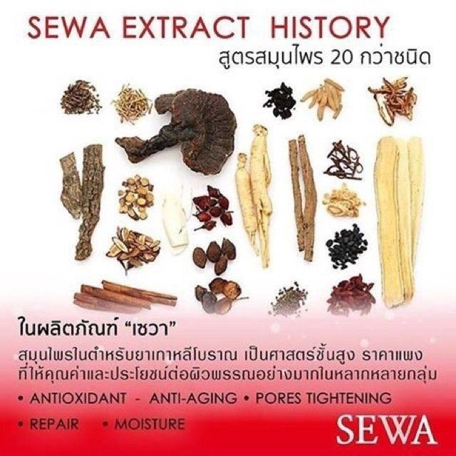 Sewa Insam Essence ราคา